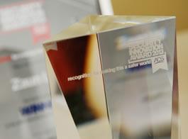 S&P Innovation Award 2013